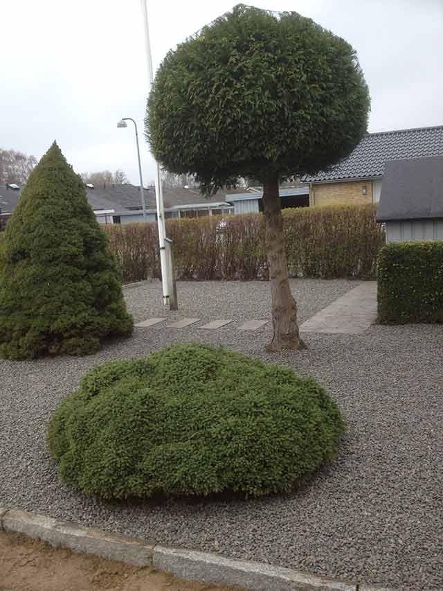 Havearkitekt Fyn og Odense